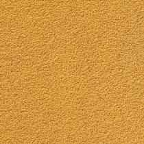 GOLD 150mm Grip 15A 50/caja