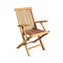 Juego 2 sillas jardín plegable con brazos Colonial II