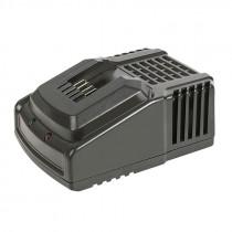 Cargador rápido baterías Share System
